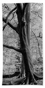 Two Trees In Spring - Mono Bath Towel