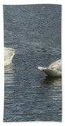 Two Trumpeter Swans At Oxbow Bend Bath Towel
