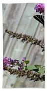 Two Zebra Swallowtail Butterflies Bath Towel