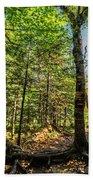 U Shaped Trees Cascade Mountain Ny New York Bath Towel