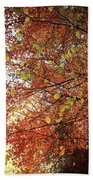 Under An Autumn Sky - No.2 Hand Towel
