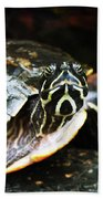 Underwater Turtle Bath Towel