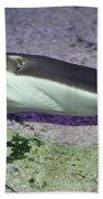 Underwater04 Bath Towel