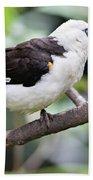 Unknown White Bird On Tree Branch Bath Towel