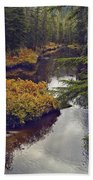 Upper Salamander Creek Bath Towel