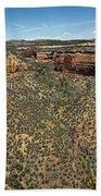 Ute Canyon Panorama Bath Towel
