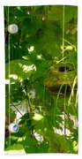 Vegetables Plant For Urban Life 1 Bath Towel