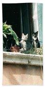 Venetian Cats Bath Towel
