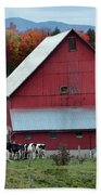 Vermont Cows At The Barn Bath Towel