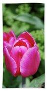 Very Pretty Dark Pink Tulip Flower Blossom Bath Towel