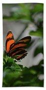 Vibrant Colors To A Orange Oak Tiger Butterfly Bath Towel