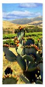 View From Santa Rosa Road Bath Towel