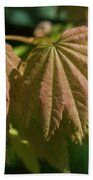 Vine Maple Leaves Bath Towel