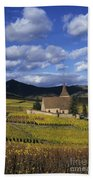 Vineyard In Alsace, France Bath Towel