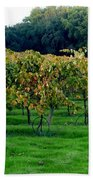 Vineyards In California Bath Towel