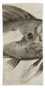 Vintage Fish Print Bath Towel