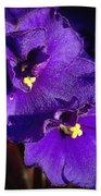 Violets Bath Towel
