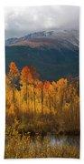 Vivid Autumn Aspen And Mountain Landscape Bath Towel