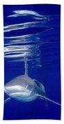 Vivid Shark Reflections Bath Towel