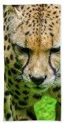 Walking Cheeta Bath Towel