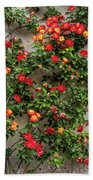 Wall Of Roses Hand Towel