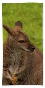 Wallaby Bath Towel