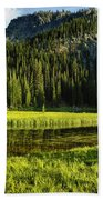 Wallowas - No. 8 Bath Towel