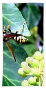 Wasp On The Ivy Bath Towel
