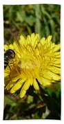 Wasp Visiting Dandelion Bath Towel