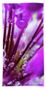 Water Droplets And Purple Flower Bath Towel