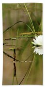 Water Lily Duet Bath Towel