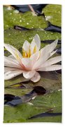 Waterlily On The Water Bath Towel