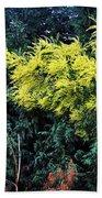 Wattyl - Wild Flower Of Australia Bath Towel