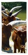 Watusi Cattle Bath Towel