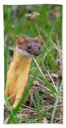 Weasel Bath Towel
