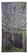 Weathered Wood And Lichen Abstract Bath Towel