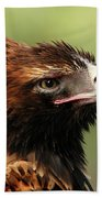 Wedge-tailed Eagle Bath Towel