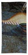 Weedy Sea Dragon Bath Towel