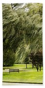 Weeping Willow Trees On Windy Day Bath Towel
