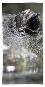 West African Dwarf Crocodile - Captive 03 Bath Towel