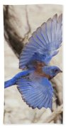Western Bluebird 2 Bath Towel
