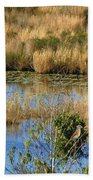 Wetlands Bath Towel