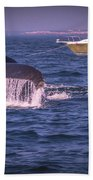 Whale Watching - Humpback Whale 3 Bath Towel