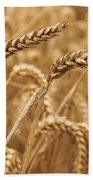 Wheat Ears 1 Bath Towel