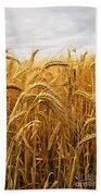 Wheat Hand Towel