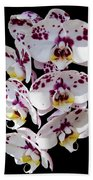 White And Magenta Orchids Bath Towel