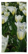 White And Pale Yellow Tulips In A Bulb Garden Bath Towel