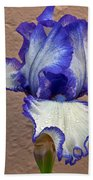 White And Purple Bearded Iris Bath Towel