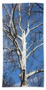 White Bark Bath Towel