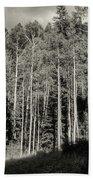 White-barked Birch Forest 3 Bath Towel